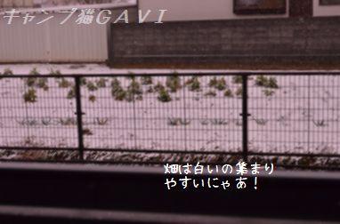 140214_2789.jpg