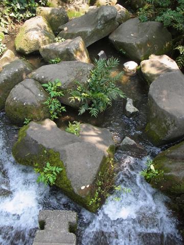 水門橋から見た神田川起点
