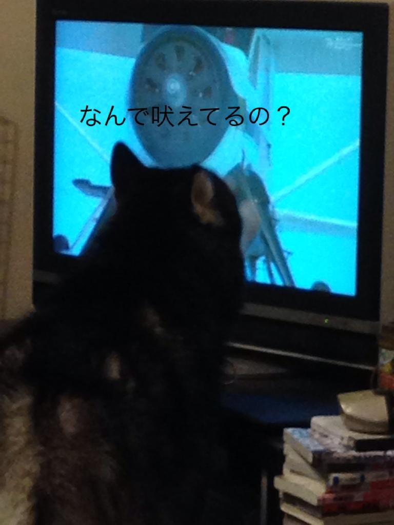 fc2blog_20141121211951770.jpg