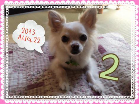 LINEcamera_share_2013-08-22-16-55-46_convert_20130823102241.jpg