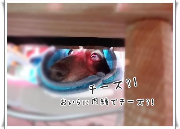 0807_003.jpg