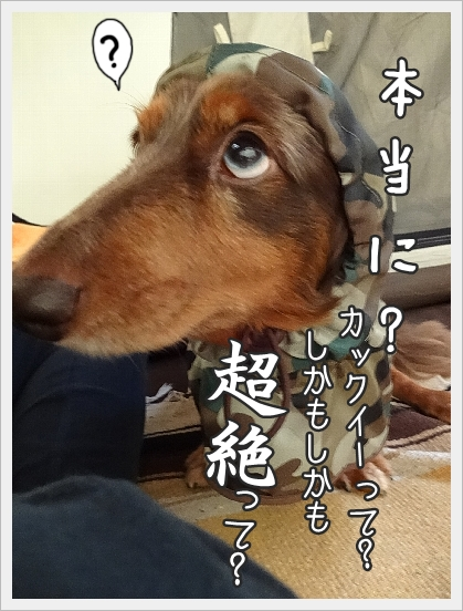 0912_004.jpg