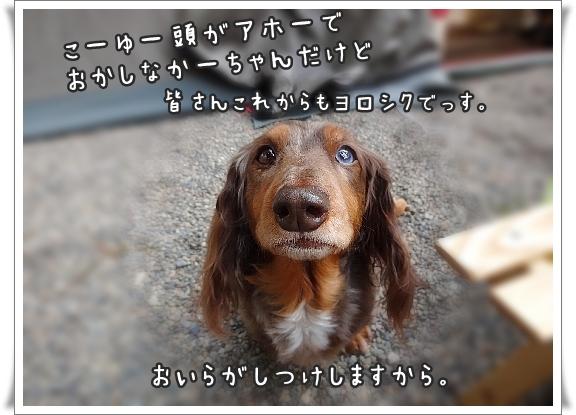 0919_006.jpg