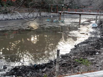乾いてきたお池