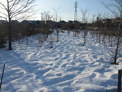 まだまだ残る雪