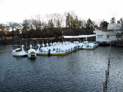 休業中のボート