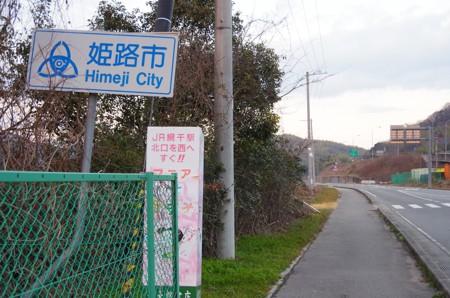 251_49.jpg