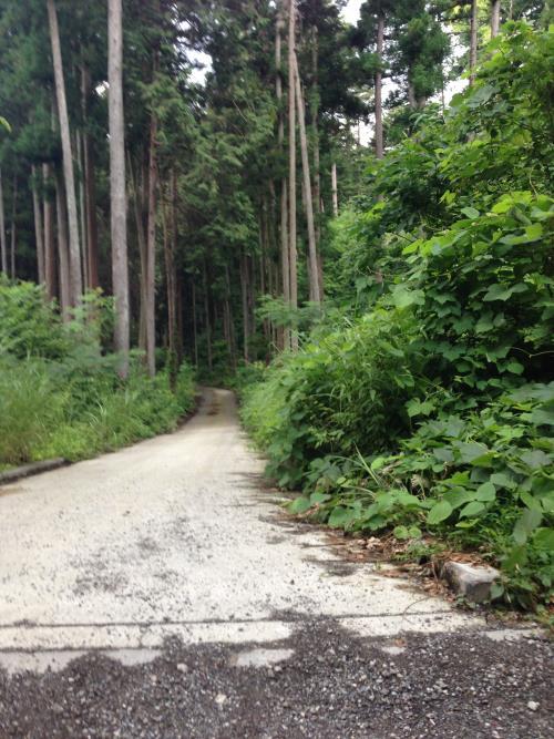 daisawa22.jpg
