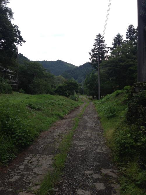 hinokiyamaro15.jpg
