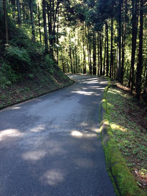 konoyama11.jpg