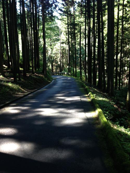 konoyama19.jpg