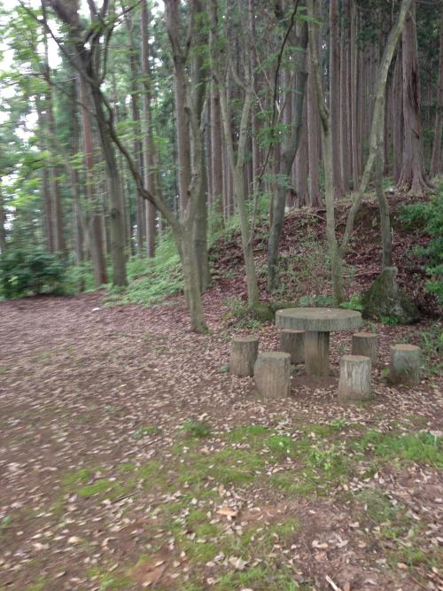okumusaA27.jpg
