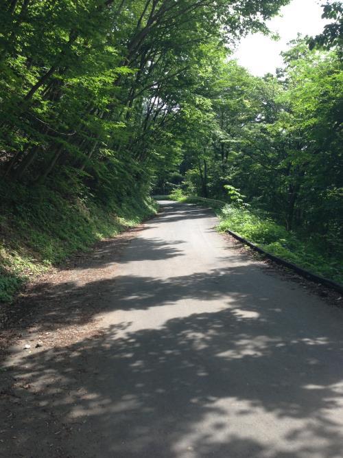 okumusaA40.jpg