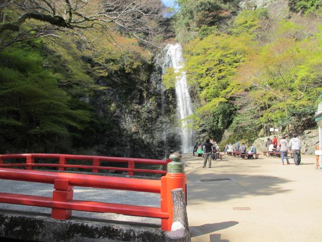 箕面滝2013春-8
