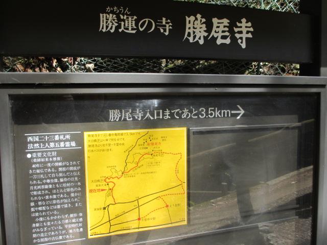 箕面滝2013春-17