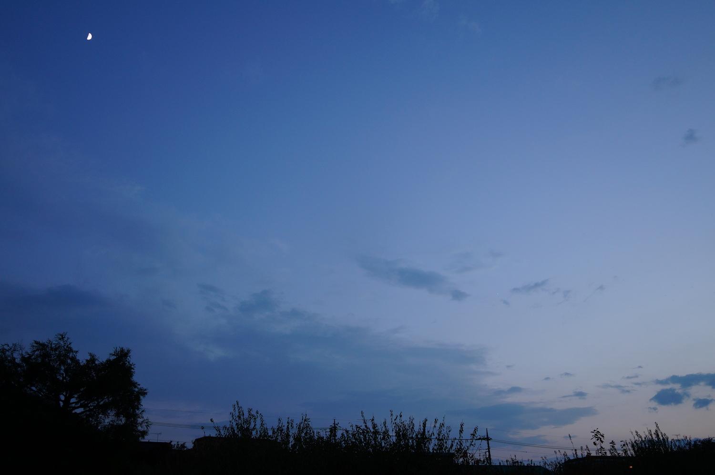 DSC049jr70.jpg