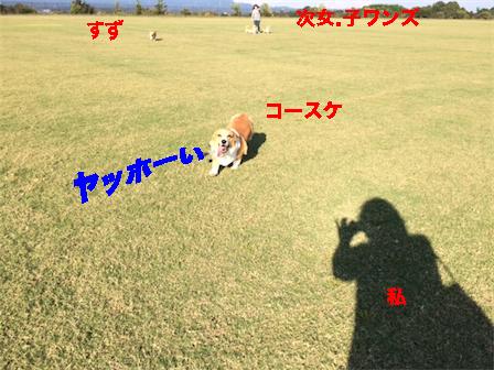 1_20141017131227e9b.jpg