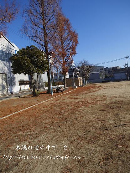 20140110094216c6b.jpg