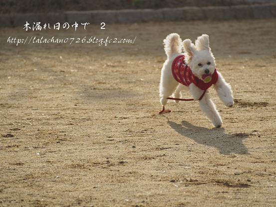 ボール 2