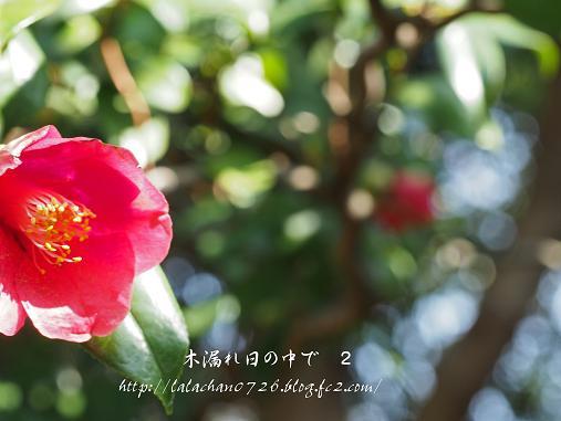 20140221212021bd6.jpg