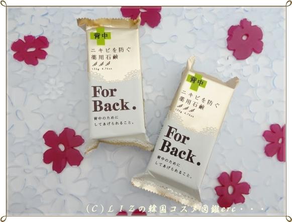For Back DSC00504
