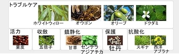 【アイソイ】アクニDrスピードスポット
