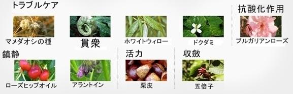 【アイソイ】アクニDrコントロールエッセンス