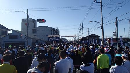 2014加須こいのぼりマラソン03