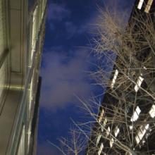 $いながき@ありがとうのブログ。-有楽町の夜空