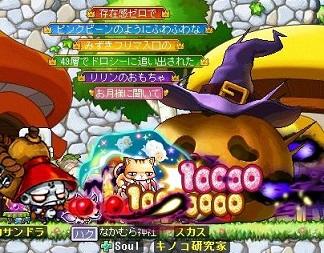 Maple141107_110131.jpg