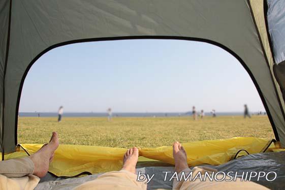 テントからの眺め