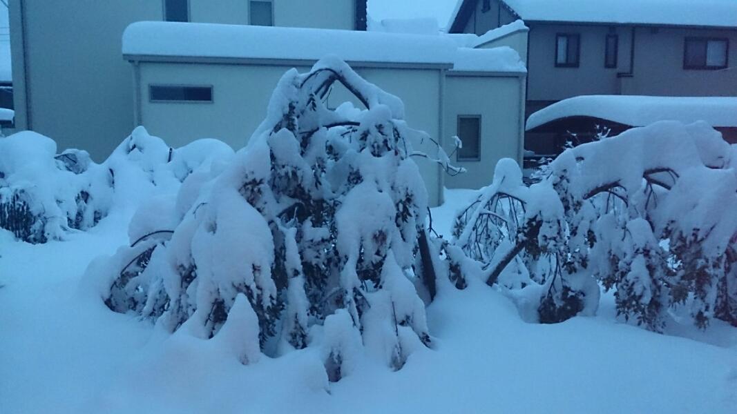 fc2_2014-02-15_14-22-47-080.jpg