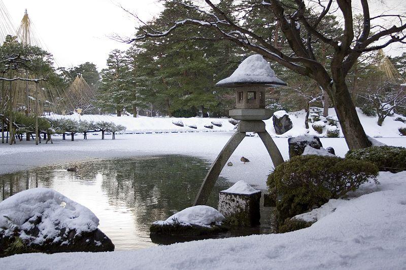 【石川県金沢】兼六園の木々が相次いで倒れる…樹齢100年の赤松も倒れる