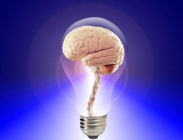 brain_3467.jpg