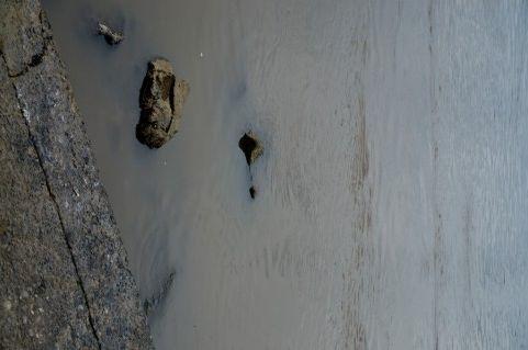 【汚染水】 福島第一原発の井戸から最高濃度の放射性物質を検出