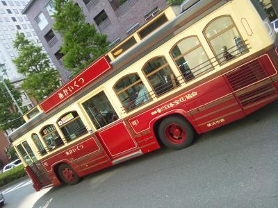 DSC_02431_convert_20130506164907.jpg