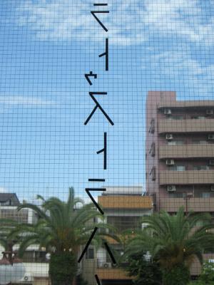 IMG_7442.jpg