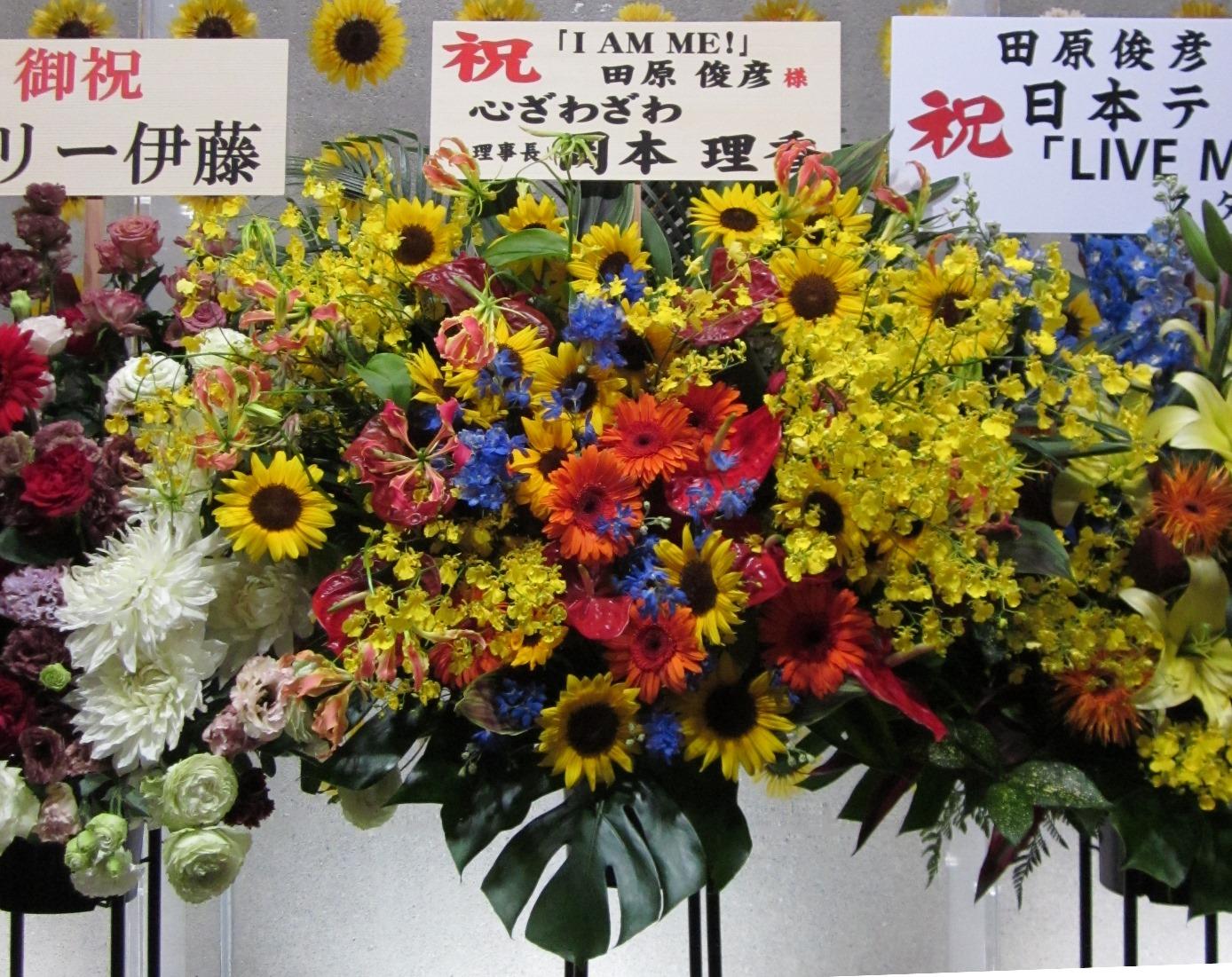 IkokoMG_0768.jpg