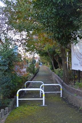 2014-11-23_80.jpg