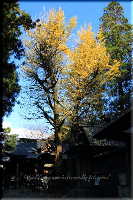 iwato01.jpg