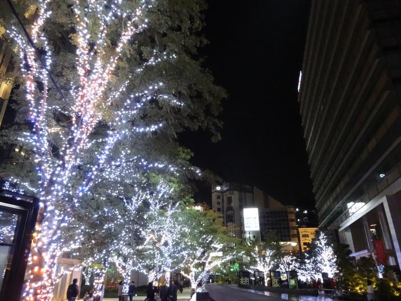 20141130_10.jpg