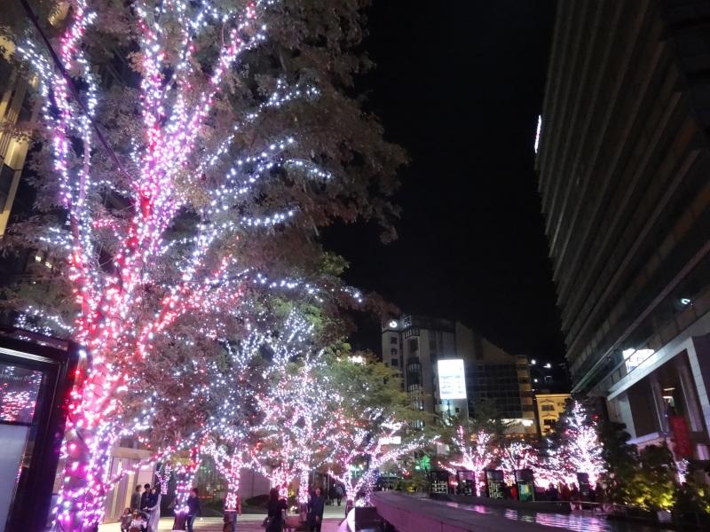 20141130_11.jpg