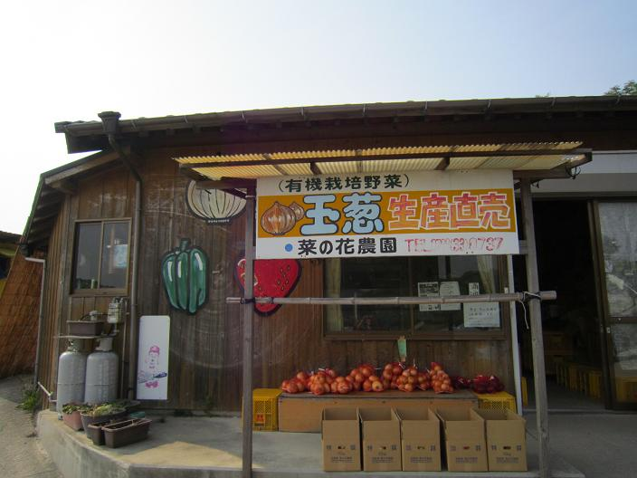 菜の花農園