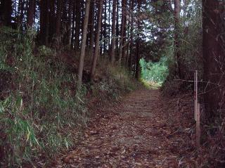 伊賀越えの道