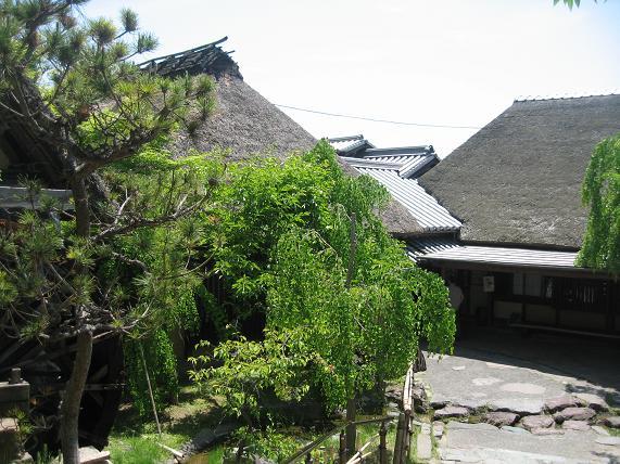 高知・窪川・高松方面旅行 117