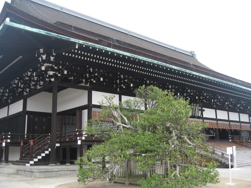 京都御所・植物園・西本願寺 037