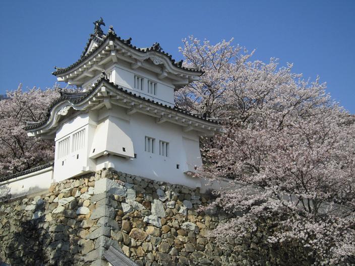 竜野城隅櫓と桜
