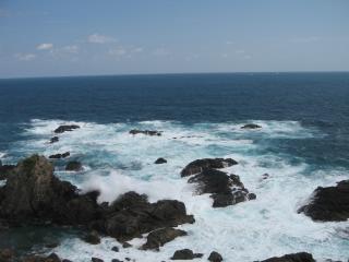 大島の岩礁と波