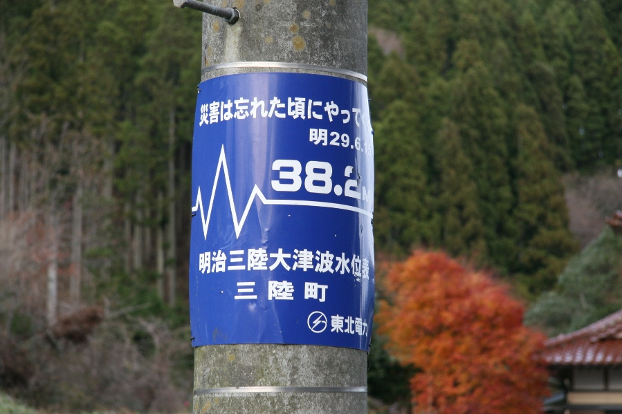 津波の高さ