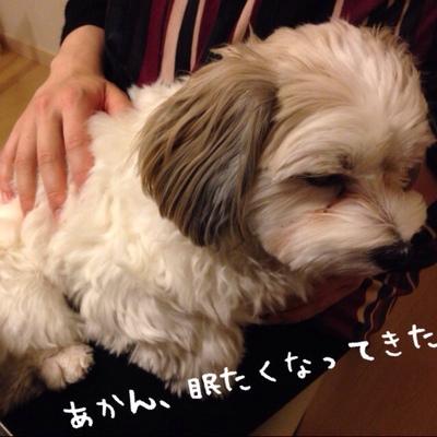 fc2blog_20140112183937add.jpg